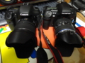 Canon EOS 7D vs OLYMPUS E-5
