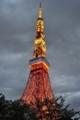 [AF-S 24-70mm F2.8E VR]東京タワー