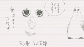 f:id:esuji5:20130513003833j:image:left