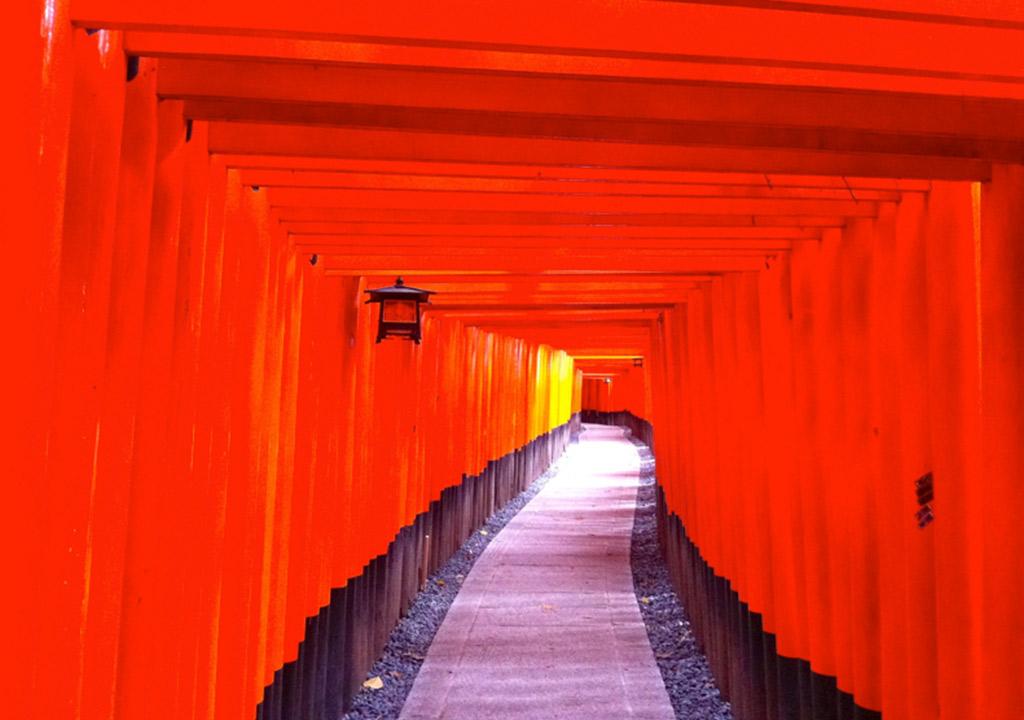 【願い事は仕事運アップ?】こんな時代だからこそ参拝すべき日本の神社10選