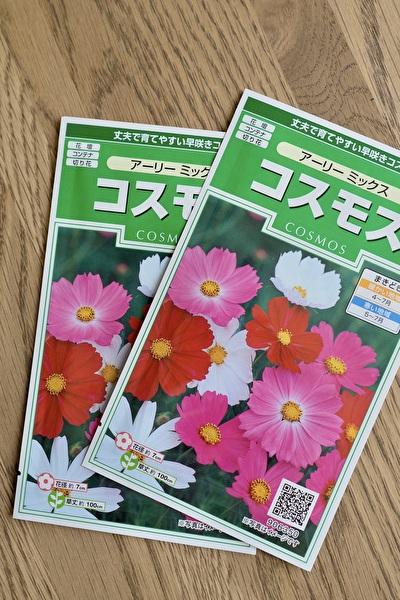 f:id:etsuko1026:20210519183240j:plain