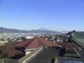 静岡より望む富士。雪がないのにびっくり!