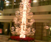 2006-11-20_22-10.jpg