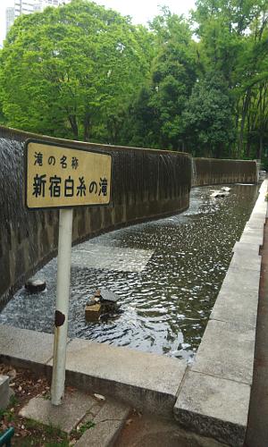 新宿白糸の滝