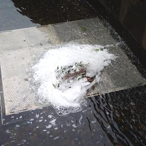 泡立った公園の水