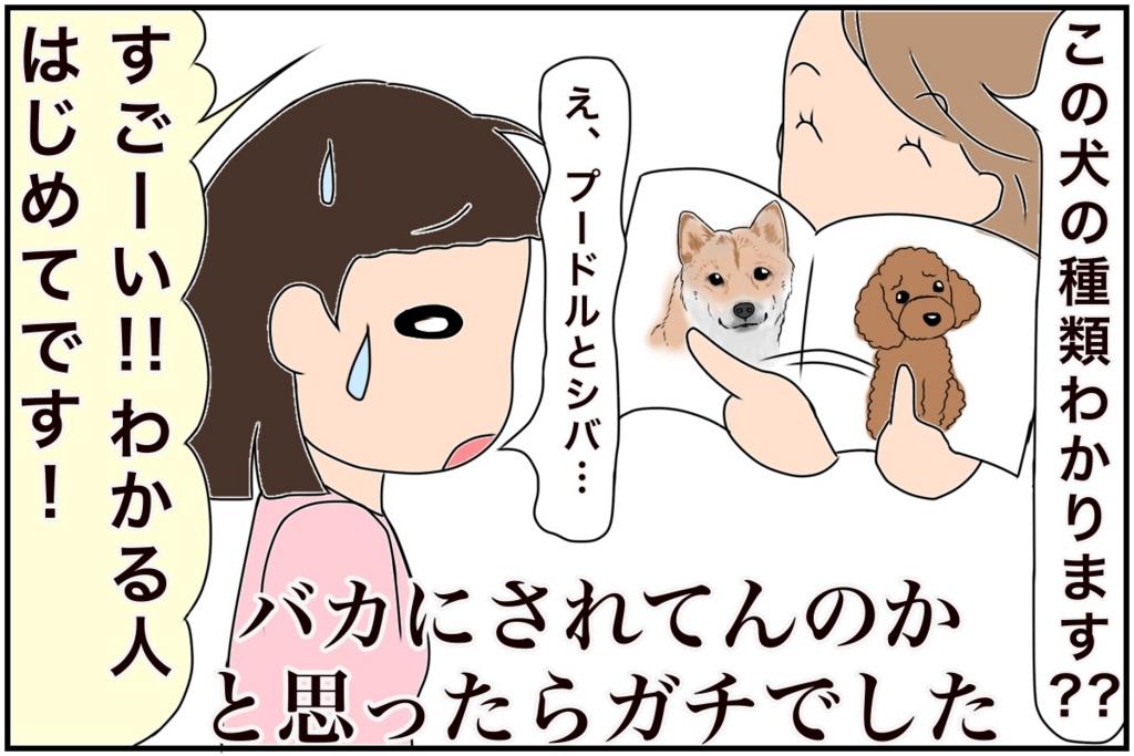 f:id:euri-kusanagi:20170217000355j:plain