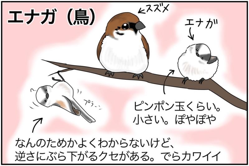 f:id:euri-kusanagi:20170306164415j:plain