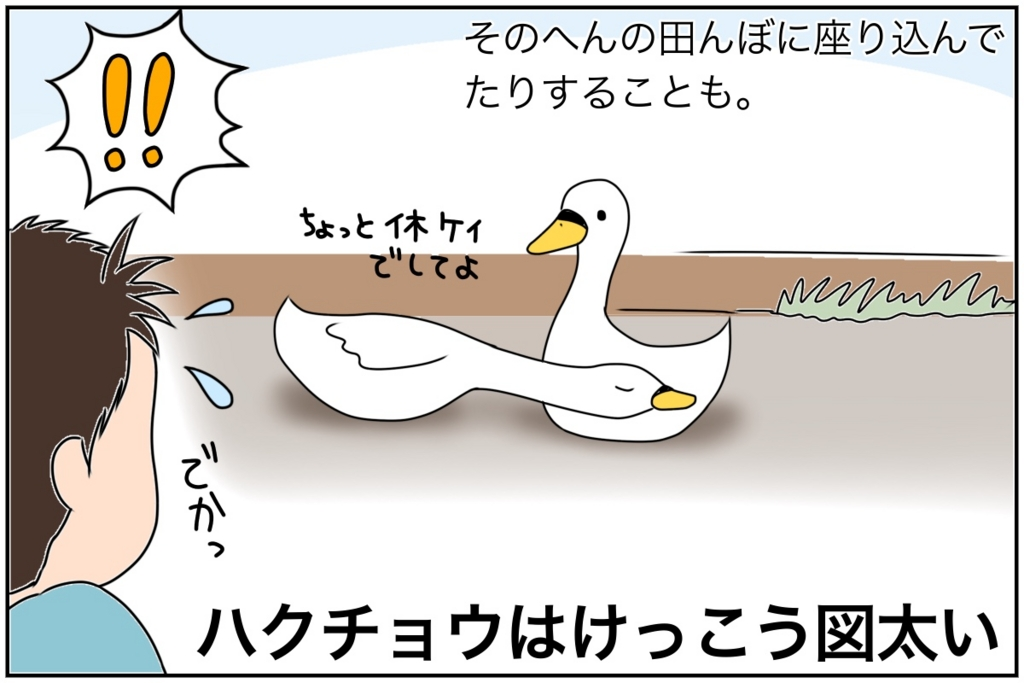 f:id:euri-kusanagi:20170413102035j:plain