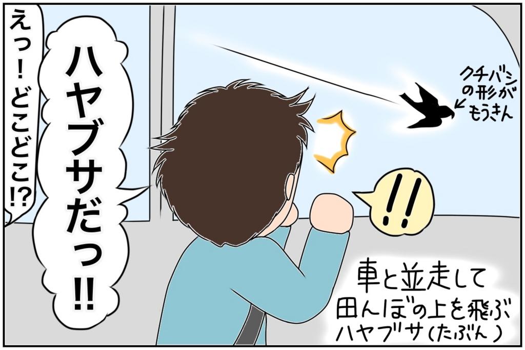 f:id:euri-kusanagi:20170513161312j:plain
