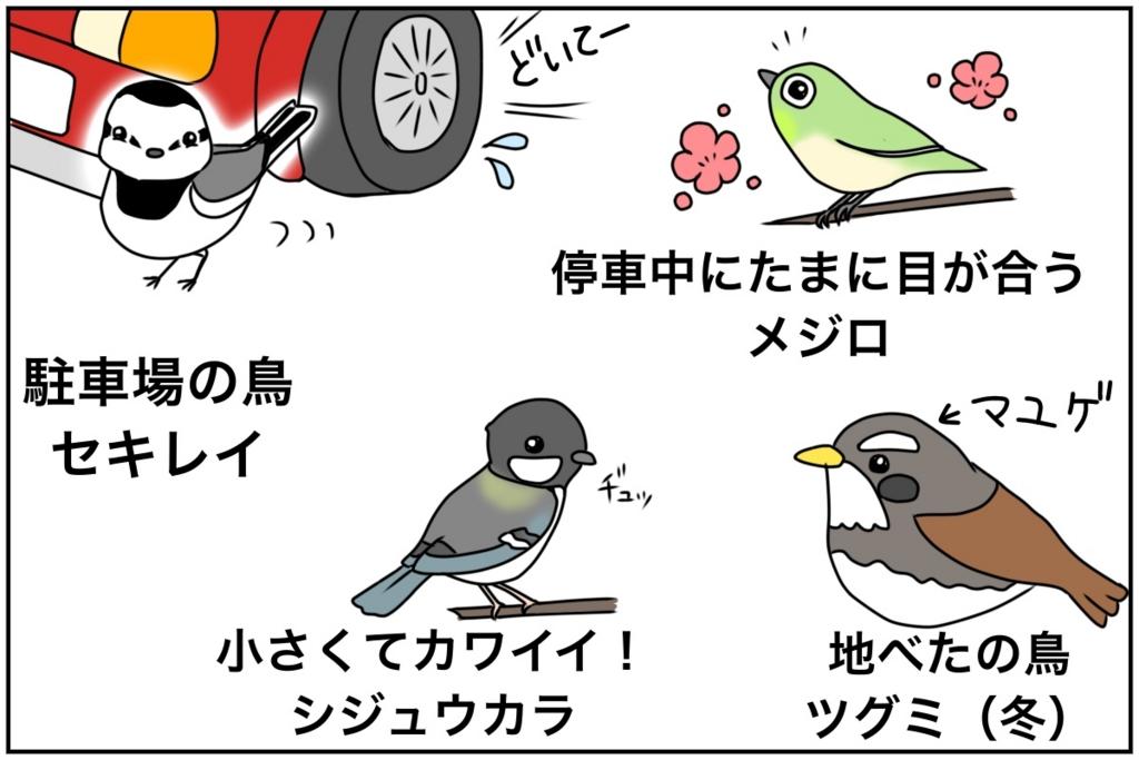 f:id:euri-kusanagi:20170513161317j:plain