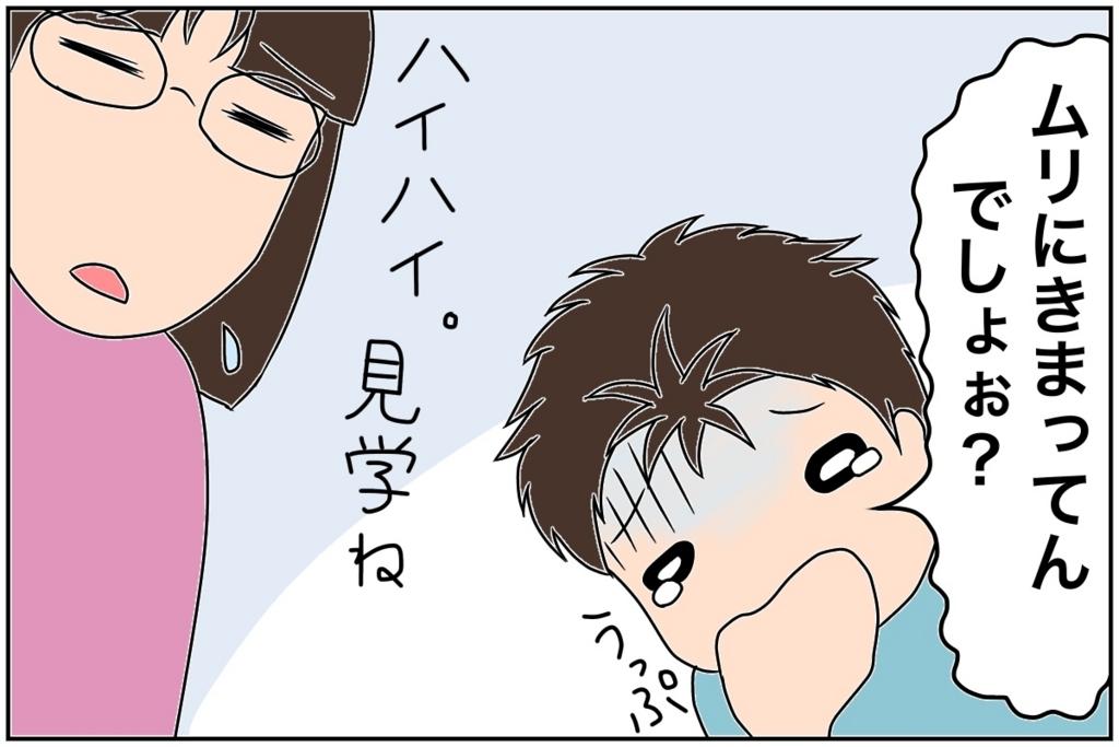 f:id:euri-kusanagi:20170530234320j:plain