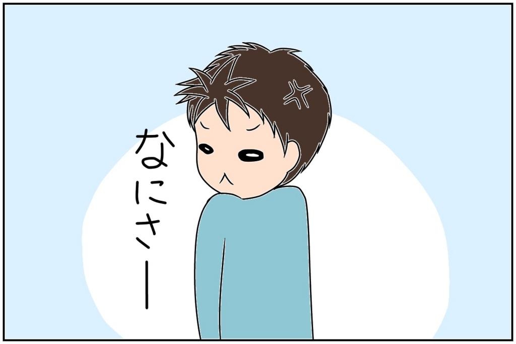 f:id:euri-kusanagi:20170608084443j:plain