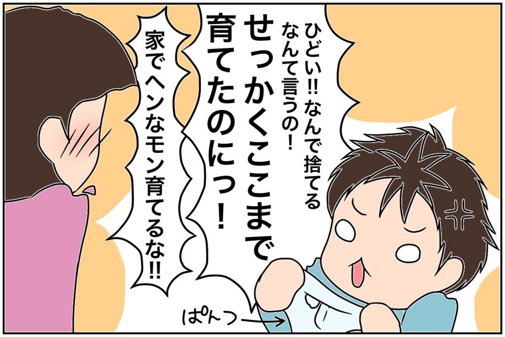f:id:euri-kusanagi:20170728004720j:plain