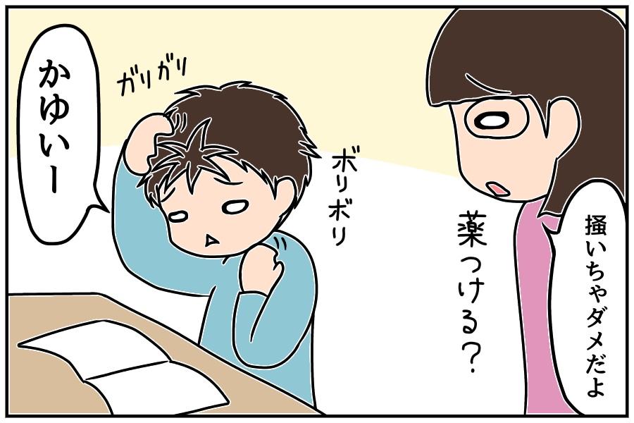 f:id:euri-kusanagi:20171105185042j:plain