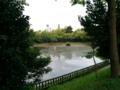 いつもの公園..中学校の隣