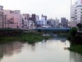 水鳥が泳ぐ川...今日も朝の交通渋滞だ