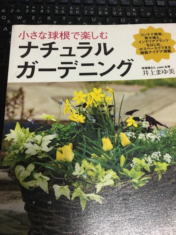 f:id:evergreen_flower:20171020191144j:plain