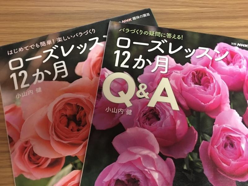 f:id:evergreen_flower:20180320172420j:plain