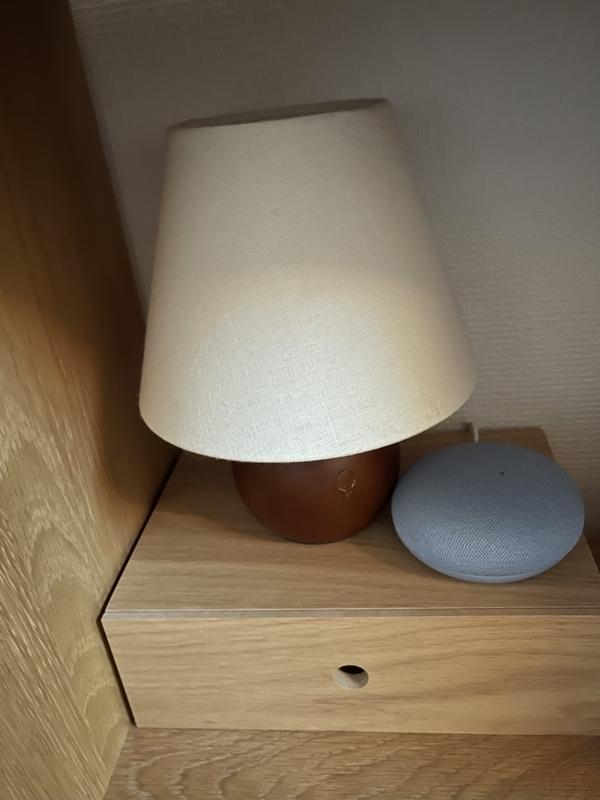 スマートプラグ Google Nest mini