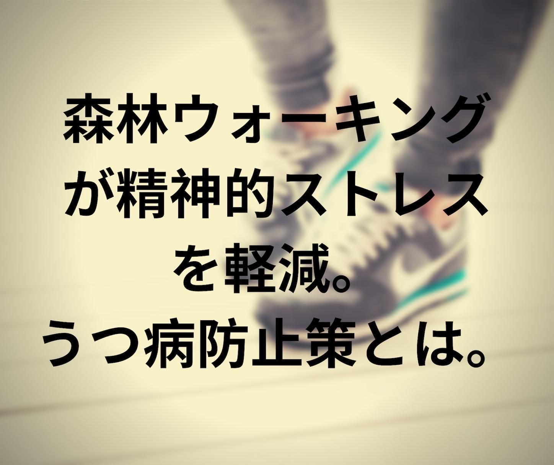 f:id:evolution8383:20191126213204p:image
