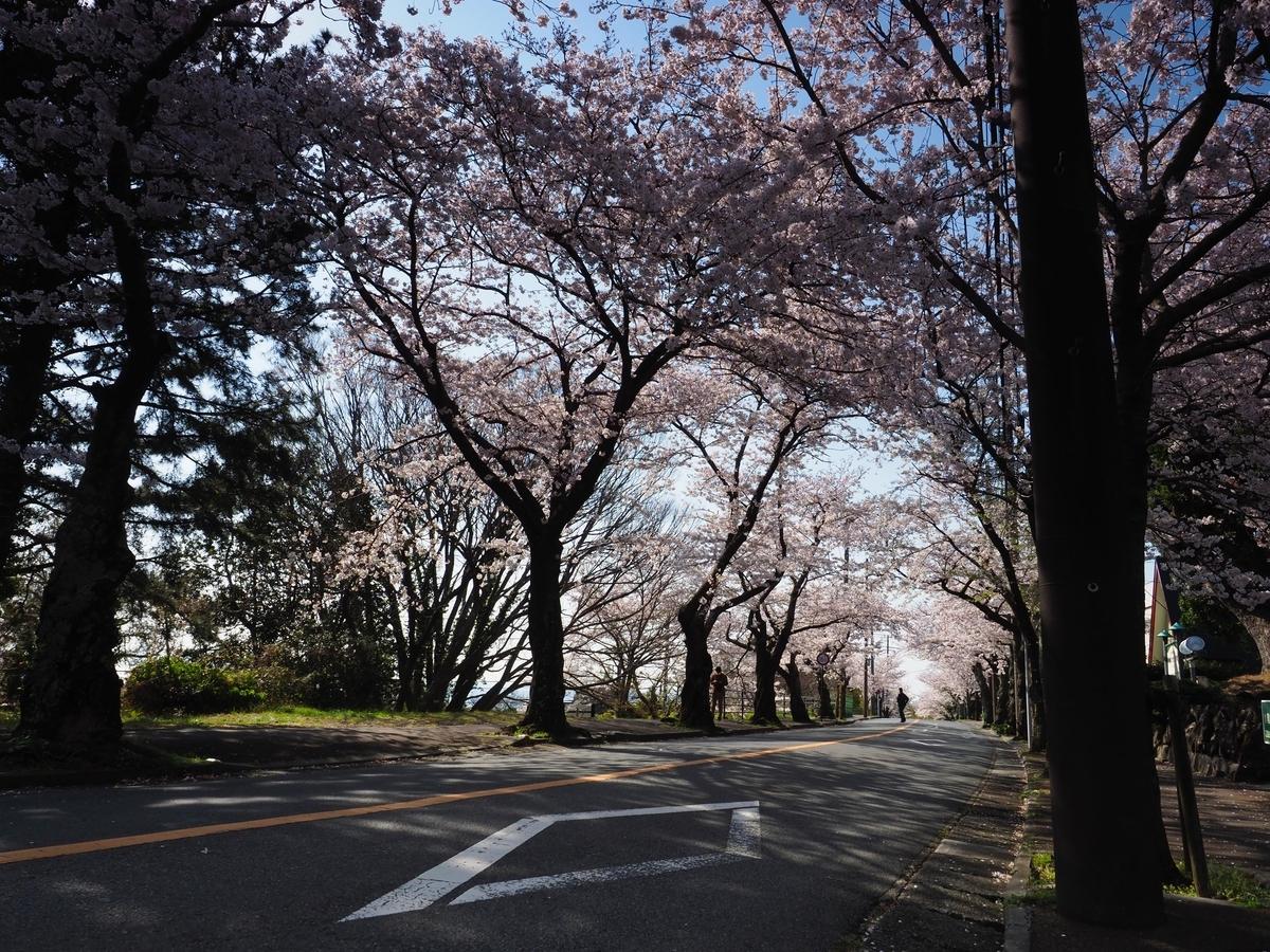 f:id:exceed-yukikaze:20190412075332j:plain