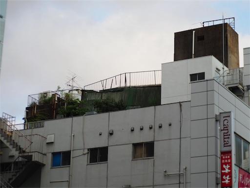 f:id:exceed-yukikaze:20190728155829j:image
