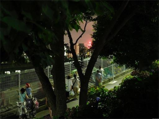 f:id:exceed-yukikaze:20190728160806j:image