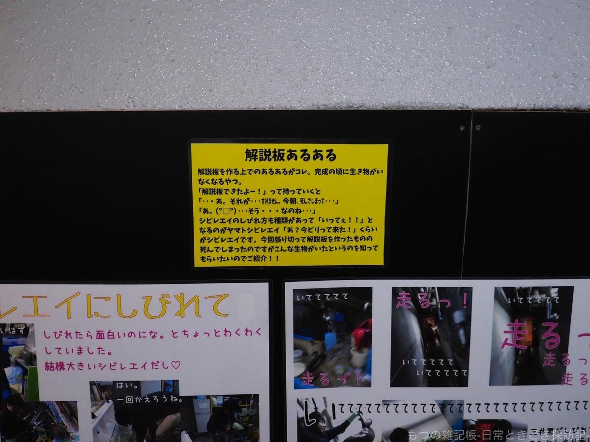 f:id:exceed-yukikaze:20191231211419j:plain