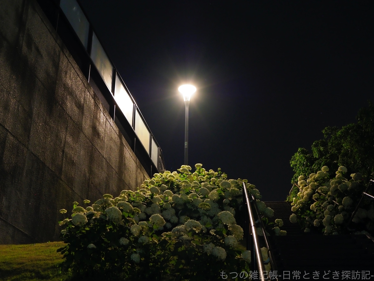 f:id:exceed-yukikaze:20200618210444j:plain