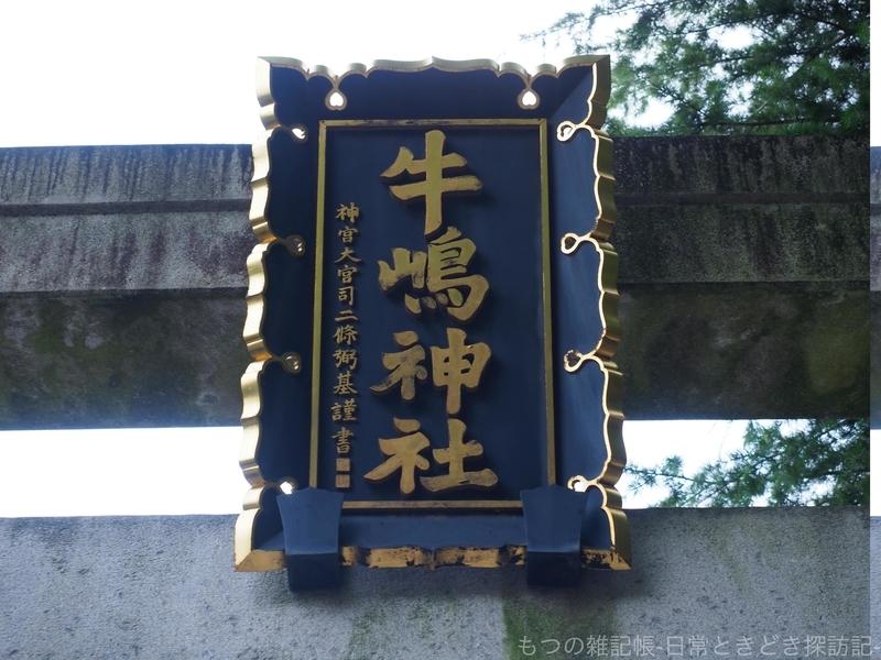f:id:exceed-yukikaze:20200628163614j:plain