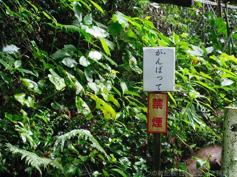 f:id:exceed-yukikaze:20200705162759j:plain