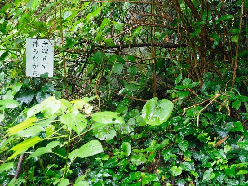 f:id:exceed-yukikaze:20200705162812j:plain