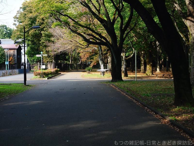 f:id:exceed-yukikaze:20201030205548j:plain