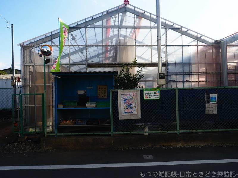 f:id:exceed-yukikaze:20201030205814j:plain
