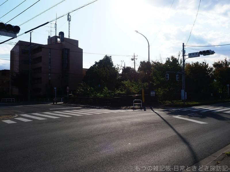 f:id:exceed-yukikaze:20201030205841j:plain