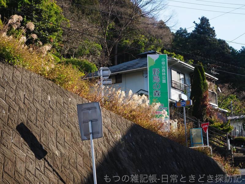 f:id:exceed-yukikaze:20201215120448j:plain