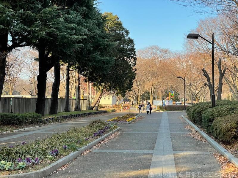 f:id:exceed-yukikaze:20201231160458j:plain