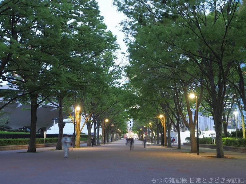f:id:exceed-yukikaze:20210406204457j:plain