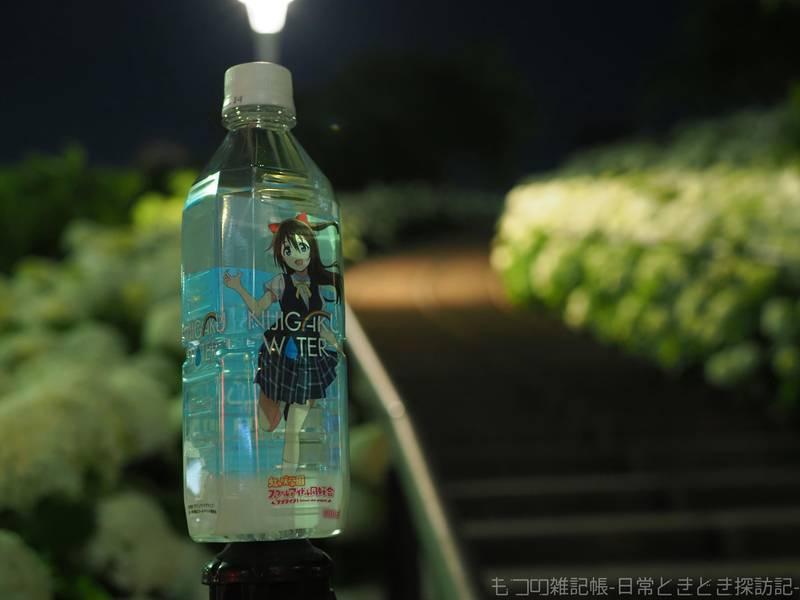 f:id:exceed-yukikaze:20210613103648j:plain