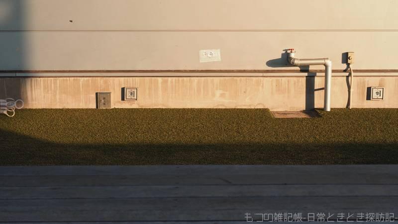 f:id:exceed-yukikaze:20210624203454j:plain