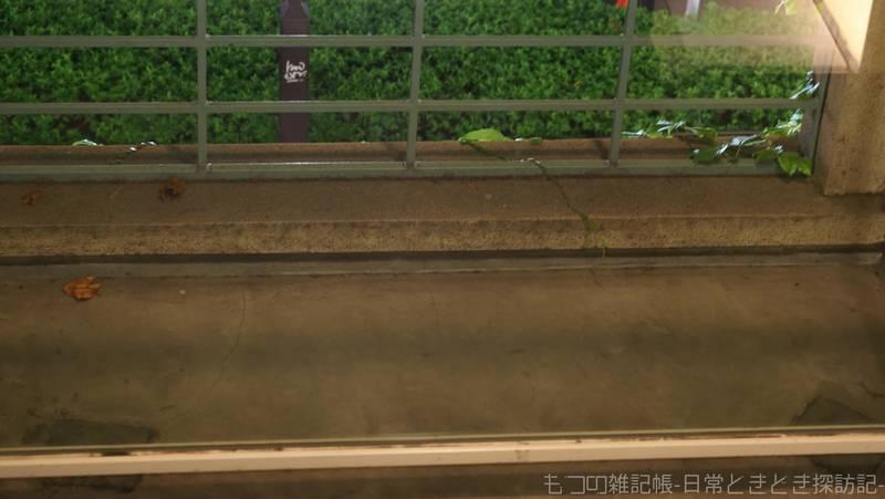 f:id:exceed-yukikaze:20210809105511j:plain