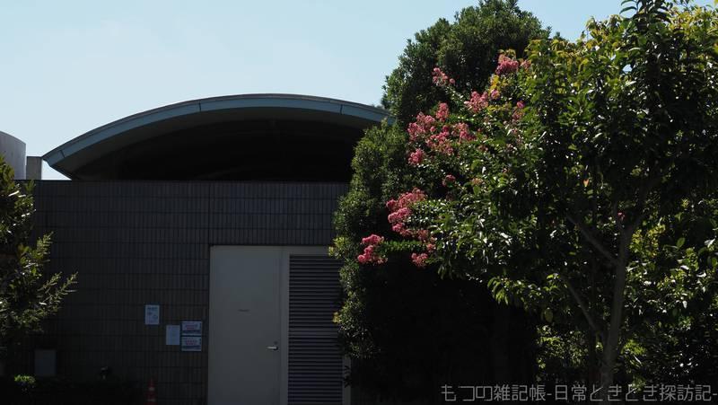 f:id:exceed-yukikaze:20210919155424j:plain