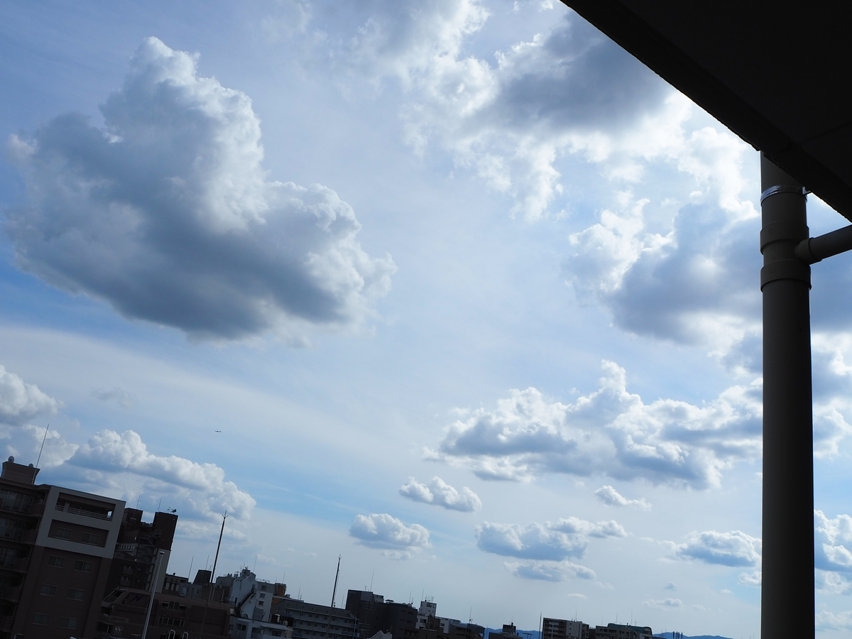 f:id:exciting-sky:20190603153156j:plain