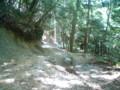 猿投山にて