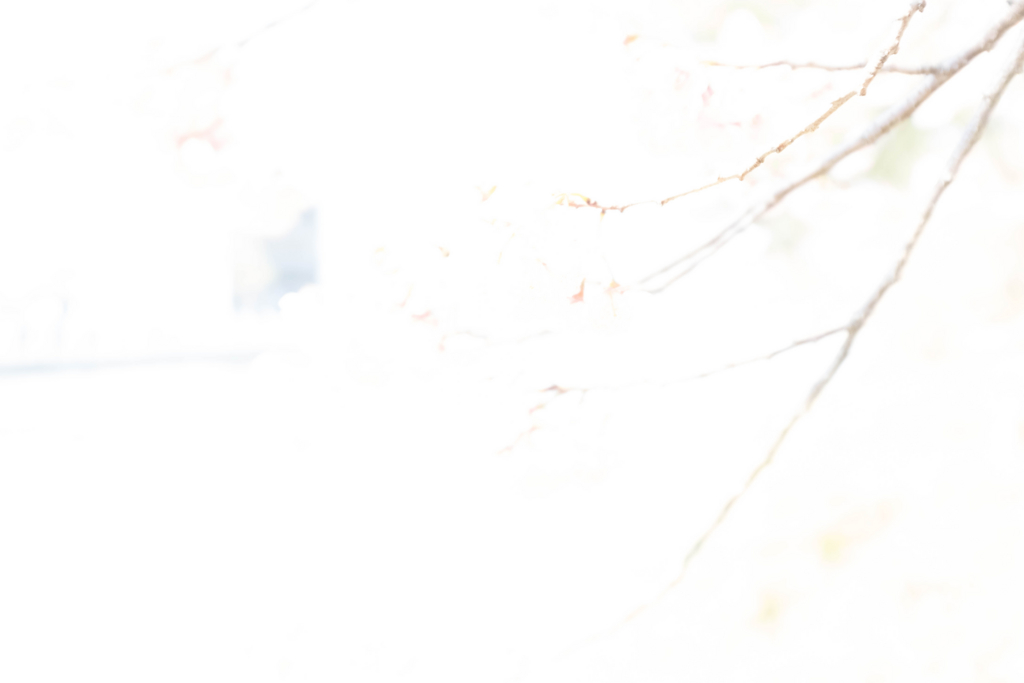 f:id:fabifuten:20170315181254j:plain