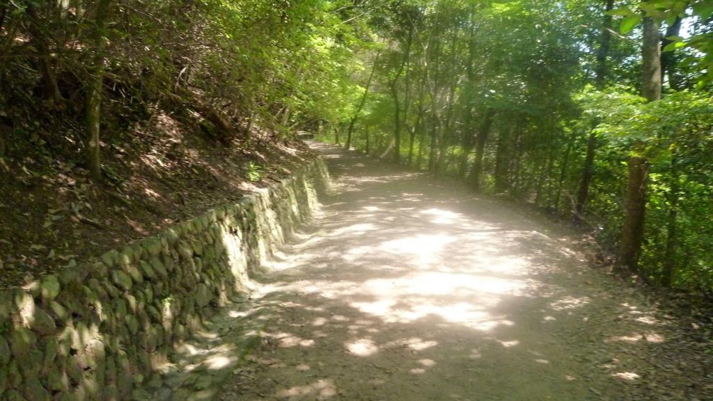 山道(大吉山)