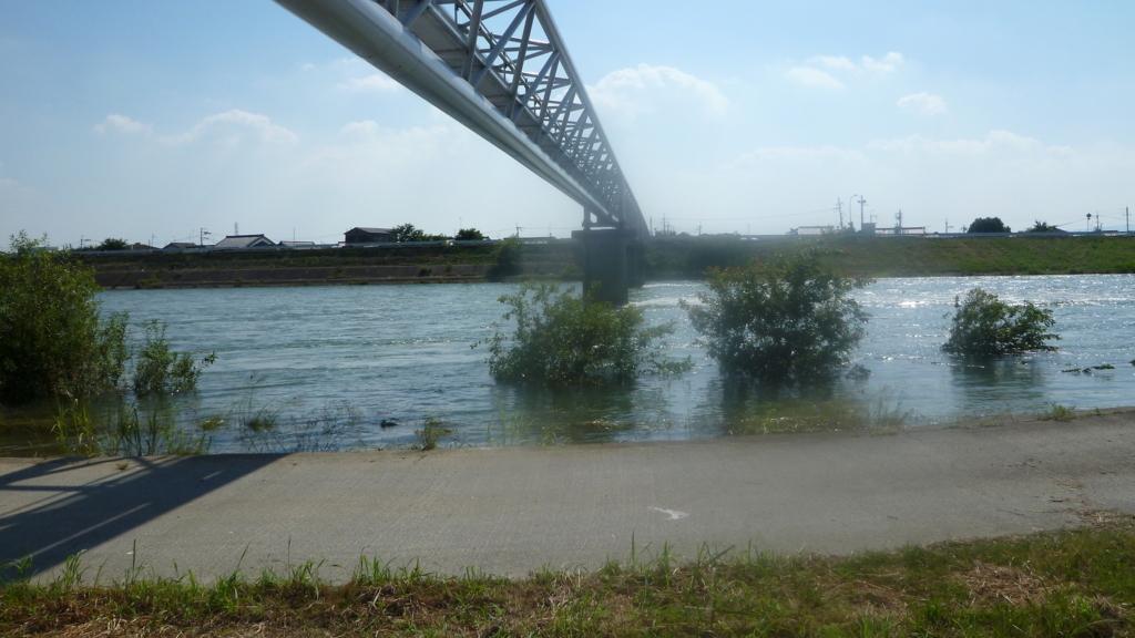 河原から水管橋を眺める