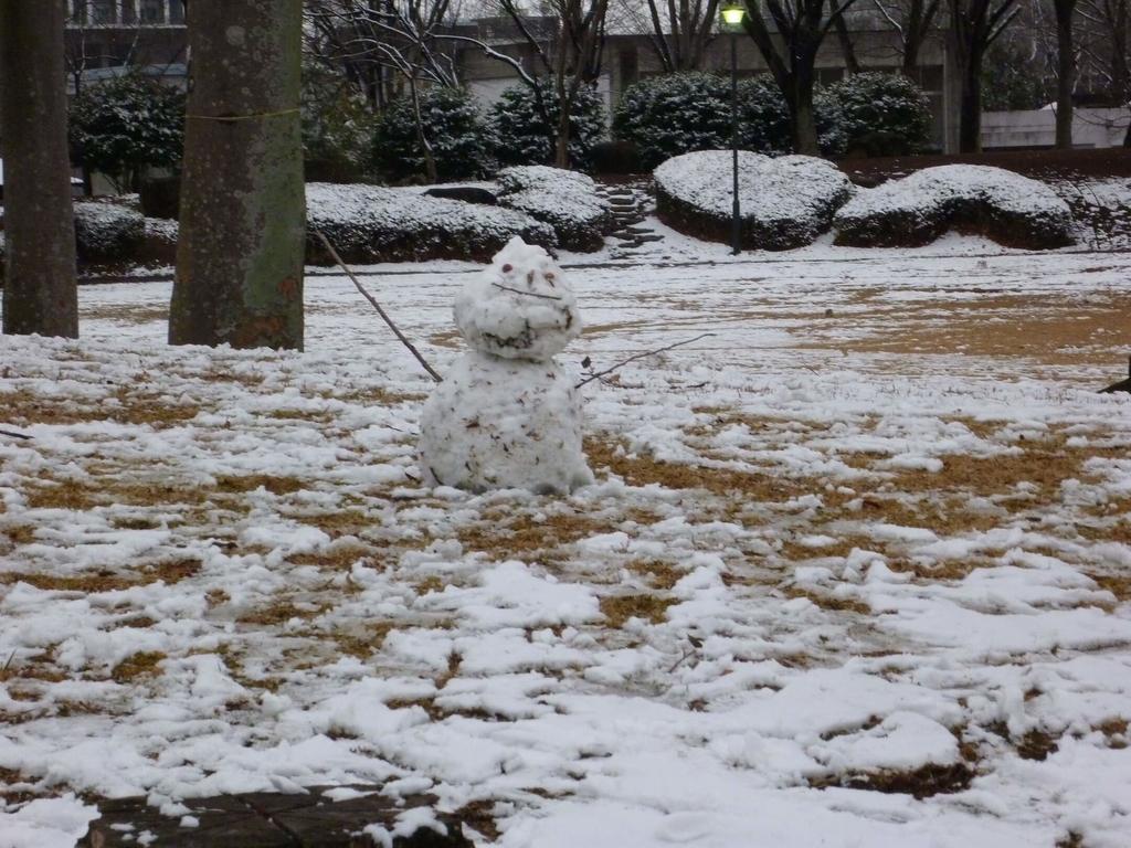 筑波の雪だるま