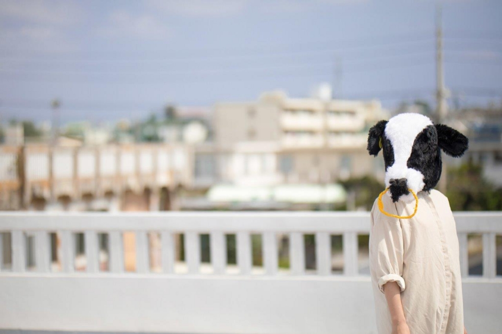 振り返る牛