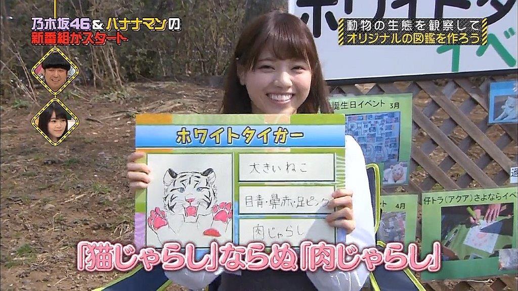 西野七瀬動物図鑑 ホワイトタイガー